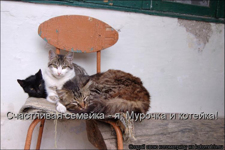 Котоматрица: Счастливая семейка - я, Мурочка и котейка!