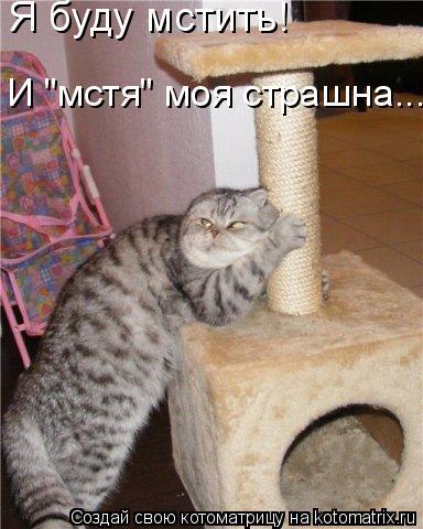 """Котоматрица: Я буду мстить! И """"мстя"""" моя страшна..."""