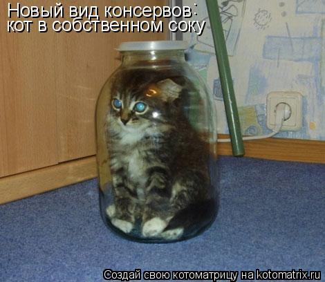 Котоматрица: Новый вид консервов : кот в собственном соку