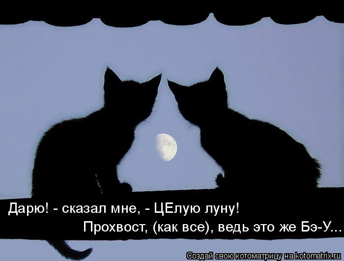 Котоматрица: Дарю! - сказал мне, - ЦЕлую луну! Прохвост, (как все), ведь это же Бэ-У...
