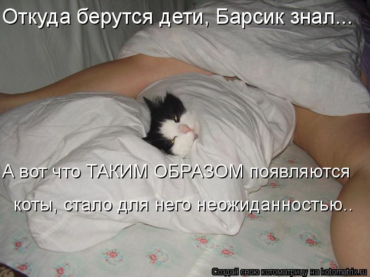 Котоматрица: Откуда берутся дети, Барсик знал... А вот что ТАКИМ ОБРАЗОМ появляются коты, стало для него неожиданностью..