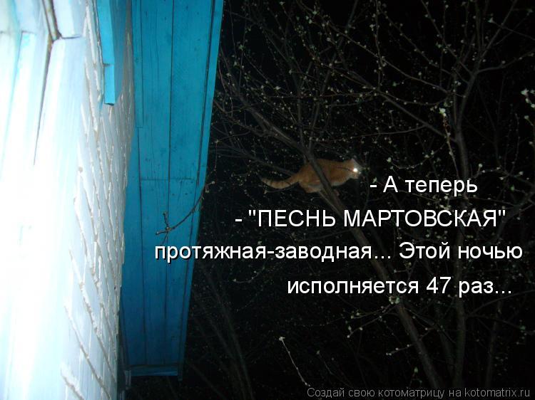 """Котоматрица: - А теперь  - """"ПЕСНЬ МАРТОВСКАЯ"""" протяжная-заводная... Этой ночью исполняется 47 раз..."""