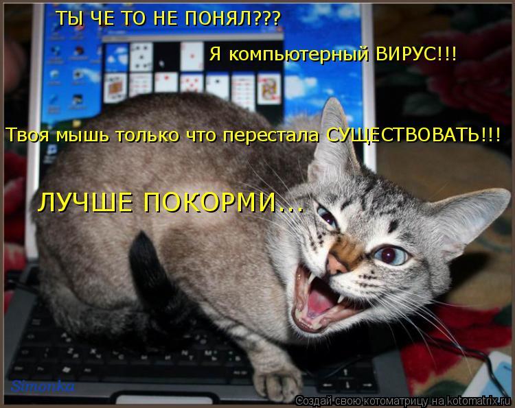 Котоматрица: ТЫ ЧЕ ТО НЕ ПОНЯЛ???  ТЫ ЧЕ ТО НЕ ПОНЯЛ??? Я компьютерный ВИРУС!!! Твоя мышь только что перестала СУЩЕСТВОВАТЬ!!! ЛУЧШЕ ПОКОРМИ...