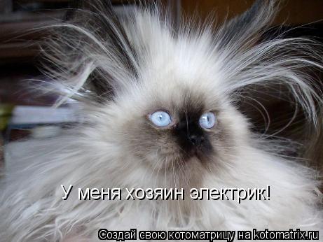 Котоматрица: У меня хозяин электрик!
