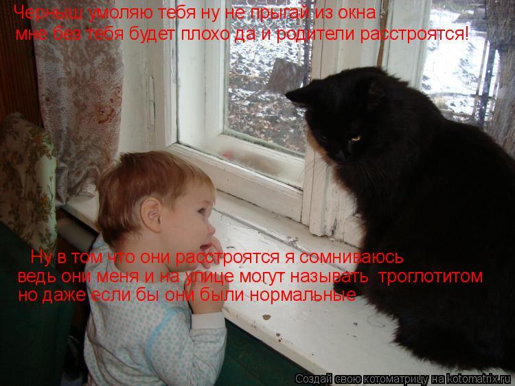 Котоматрица: Черныш умоляю тебя ну не прыгай из окна мне без тебя будет плохо да и родители расстроятся! Ну в том что они расстроятся я сомниваюсь  ведь о