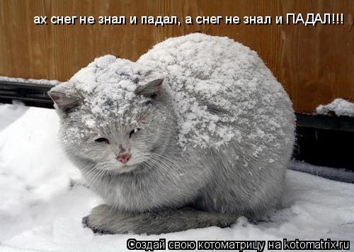 Котоматрица: ах снег не знал и падал, а снег не знал и ПАДАЛ!!!