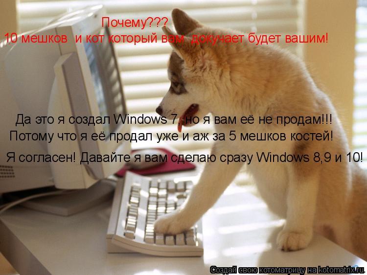 Котоматрица: Да это я создал Windows 7, но я вам её не продам!!! Почему??? Потому что я её продал уже и аж за 5 мешков костей! 10 мешков  и кот который вам  докуча