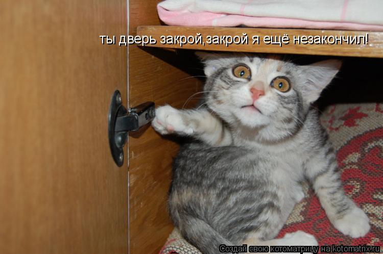 Котоматрица: ты дверь закрой,закрой я ещё незакончил!