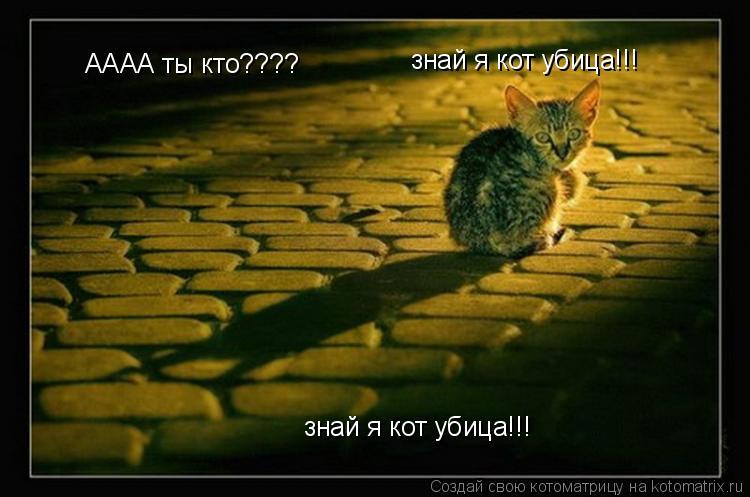 Котоматрица: АААА ты кто????  знай я кот убица!!! знай я кот убица!!!