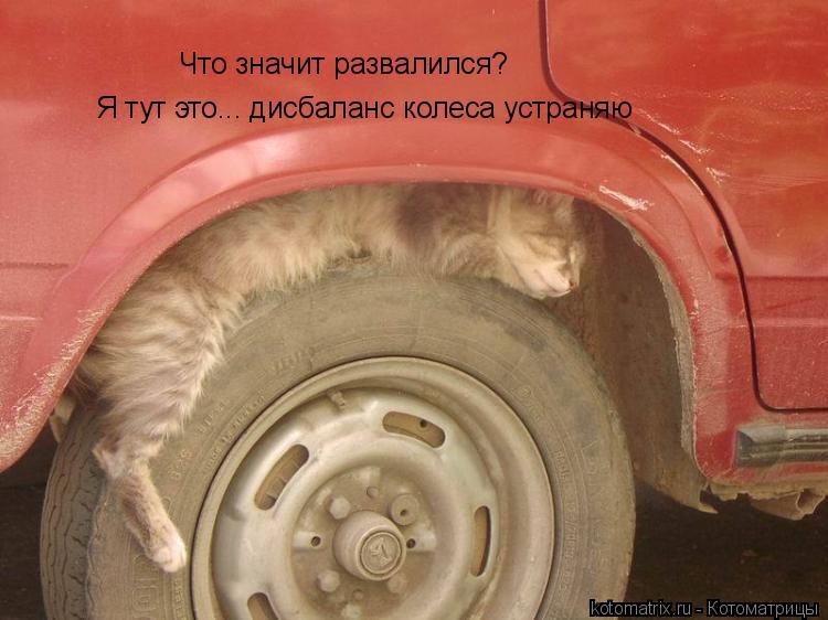 Котоматрица: Что значит развалился? Я тут это... дисбаланс колеса устраняю