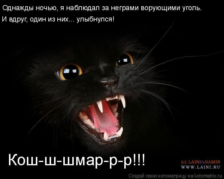 Котоматрица: Кош-ш-шмар-р-р!!! Однажды ночью, я наблюдал за неграми ворующими уголь.  И вдруг, один из них... улыбнулся!