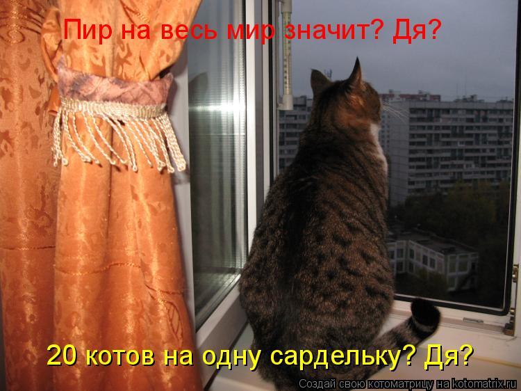 Котоматрица: Пир на весь мир значит? Дя? 20 котов на одну сардельку? Дя?