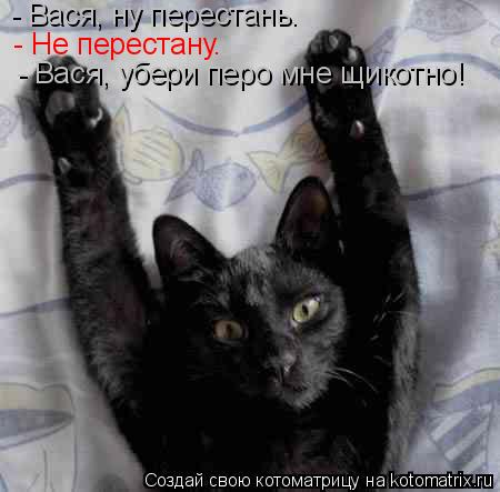 Котоматрица: - Вася, ну перестань.  - Не перестану. - Вася, убери перо мне щикотно!