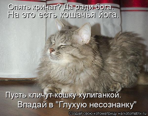 """Котоматрица: На это есть кошачья йога.  Пусть кличут кошку хулиганкой. Опять кричат? Да ради бога.  Впадай в """"Глухую несознанку"""""""