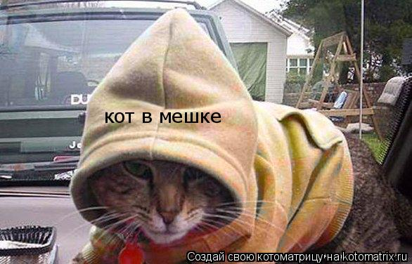 Котоматрица: кот в мешке