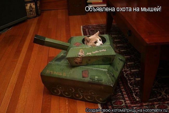 Котоматрица: Объявлена охота на мышей!