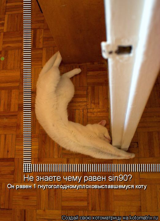 Котоматрица: |||||||||||||||||||||||||||||||||||||||||||||||||||||||||||||||||||||||||||||||||||||||||||||||||||||||||||||||||||||||| |||||||||||||||||||||||||||||