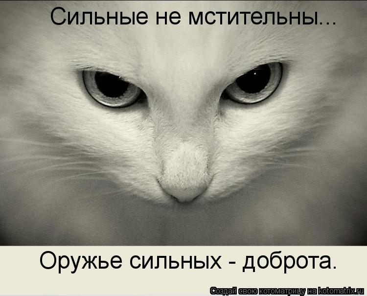Котоматрица: Сильные не мстительны... Оружье сильных - доброта.