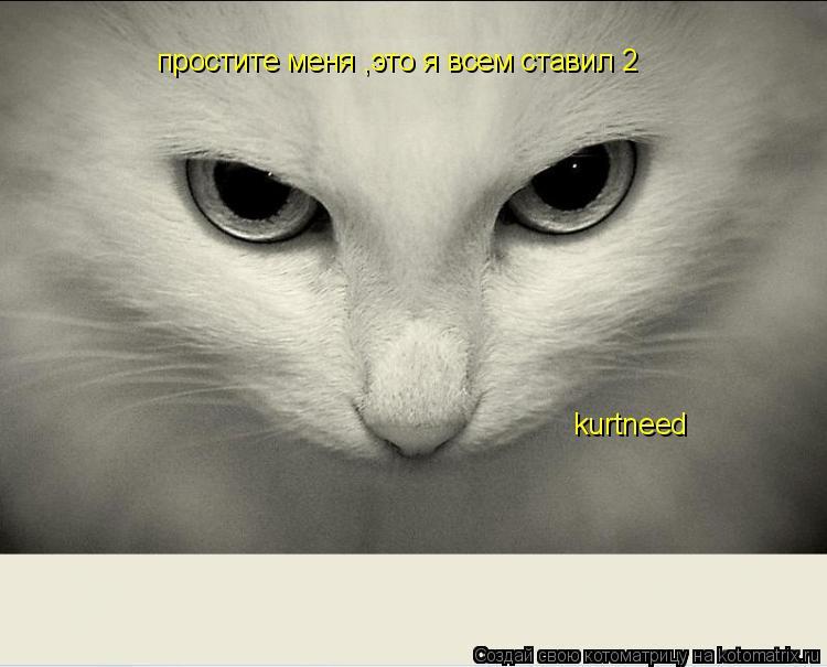 Котоматрица: простите меня ,это я всем ставил 2 kurtneed