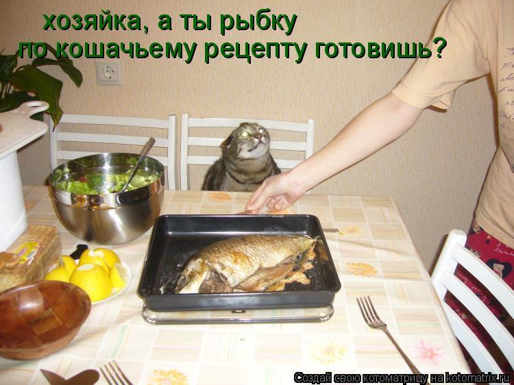 Котоматрица: хозяйка, а ты рыбку   по кошачьему рецепту готовишь?