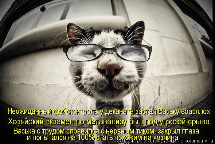 Котоматрица: Васька с трудом справился с нервным тиком, закрыл глаза   Хозяйский экзамен по матанализу был под угрозой срыва. Hеожиданный фэйсконтроль у