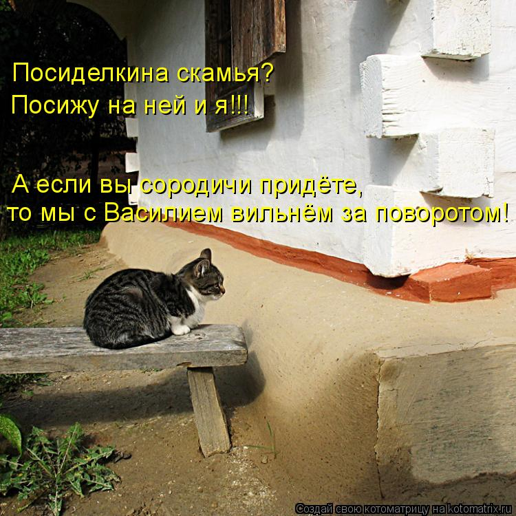 Котоматрица: Посиделкина скамья? Посижу на ней и я!!! А если вы сородичи придёте, то мы с Василием вильнём за поворотом!