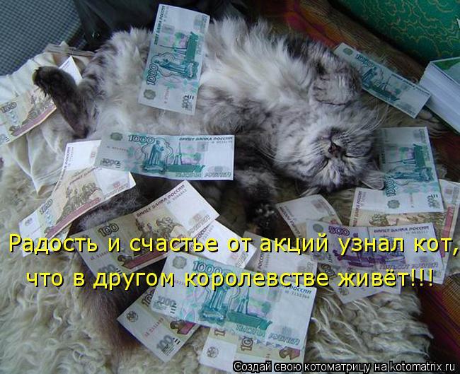 Котоматрица: Радость и счастье от акций узнал кот, что в другом королевстве живёт!!!