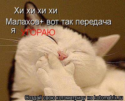Котоматрица: Хи хи хи хи  Малахов+ вот так передача  я УГОРАЮ