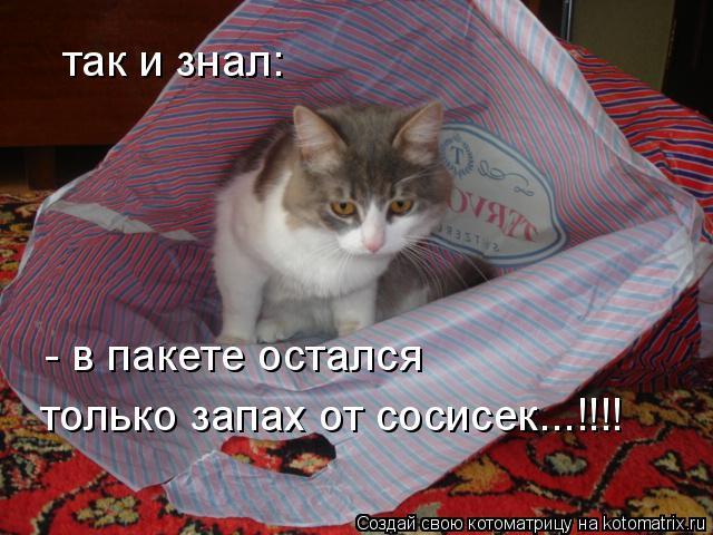 Котоматрица: так и знал:  - в пакете остался только запах от сосисек...!!!!