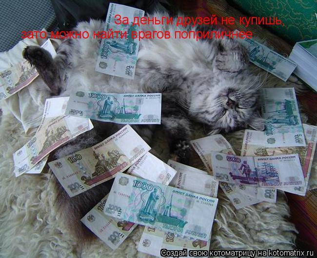 Котоматрица: За деньги друзей не купишь,  зато можно найти врагов поприличнее