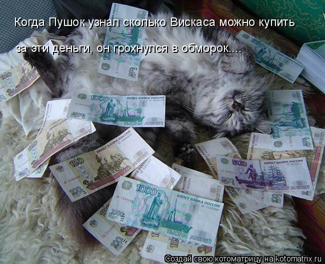 Котоматрица: Когда Пушок узнал сколько Вискаса можно купить  за эти деньги, он грохнулся в обморок....