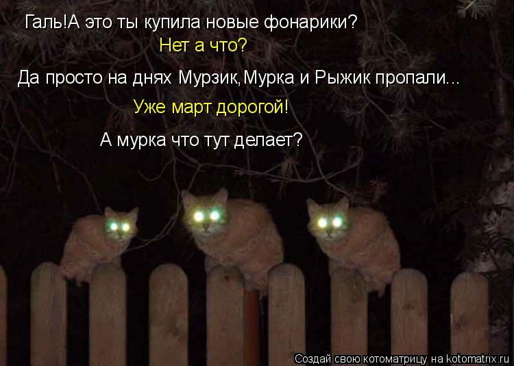 Котоматрица: Галь!А это ты купила новые фонарики? Нет а что? Да просто на днях Мурзик,Мурка и Рыжик пропали... Уже март дорогой! А мурка что тут делает?