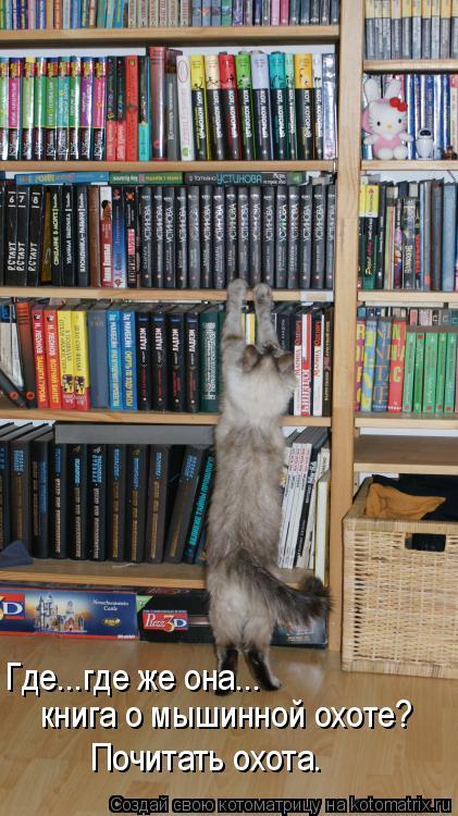 Котоматрица: Где...где же она...  книга о мышинной охоте? Почитать охота.