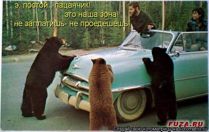 Котоматрица: э, постой , пацанчик! это наша зона! не заплатишь- не проедешешь!