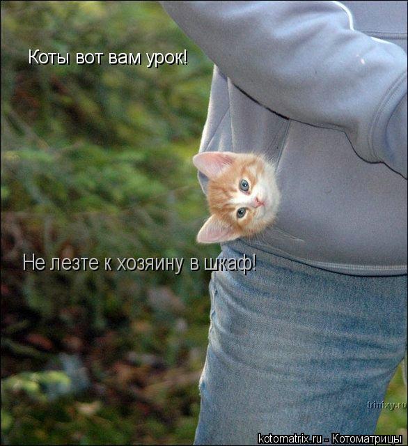 Котоматрица: Коты вот вам урок! Не лезте к хозяину в шкаф!