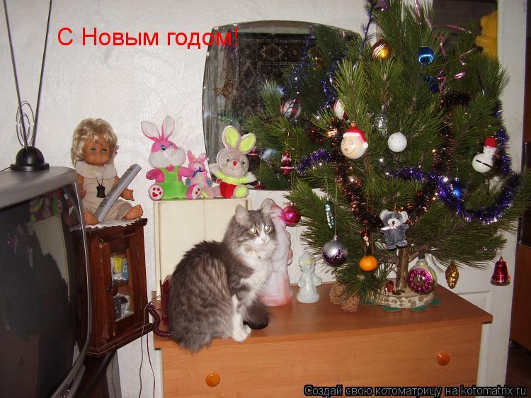 Котоматрица: С Новым годом!