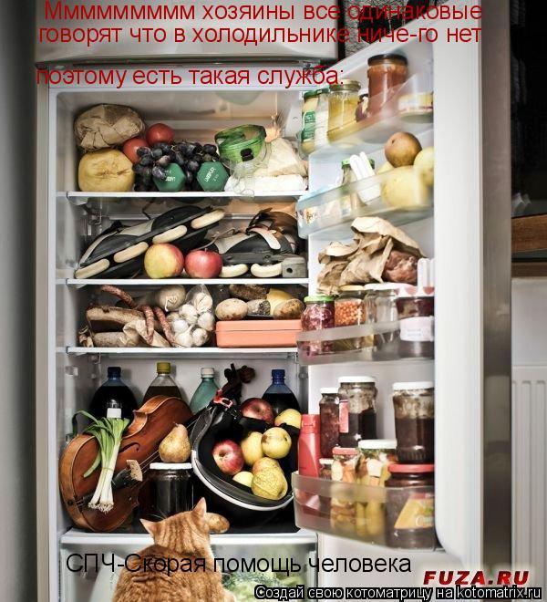 Котоматрица: Ммммммммм хозяины все одинаковые говорят что в холодильнике ниче-го нет поэтому есть такая служба: СПЧ-Скорая помощь человека