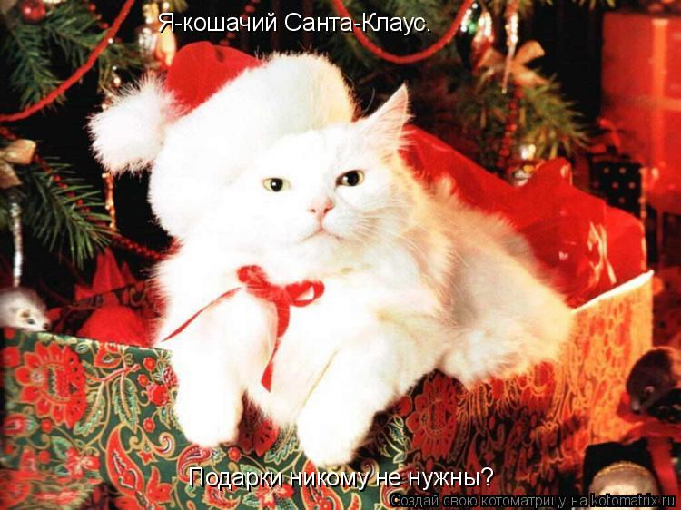 Котоматрица: Я-кошачий Санта-Клаус. Подарки никому не нужны?