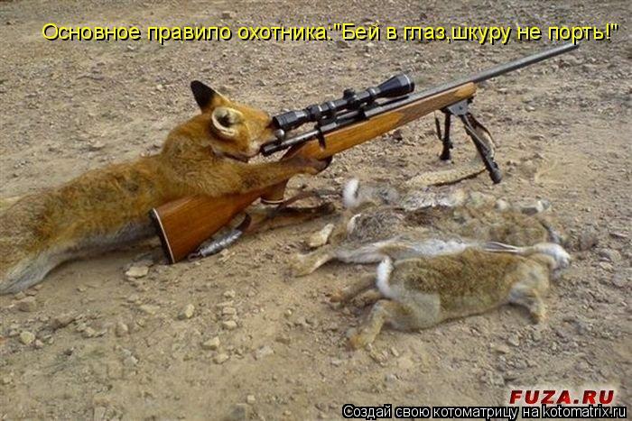 """Котоматрица: Основное правило охотника:""""Бей в глаз,шкуру не порть!"""""""