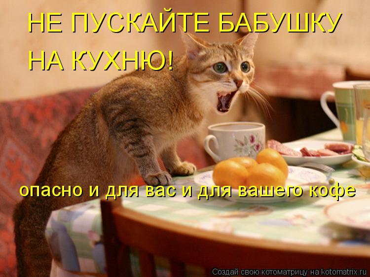 Котоматрица: НЕ ПУСКАЙТЕ БАБУШКУ НА КУХНЮ! опасно и для вас и для вашего кофе