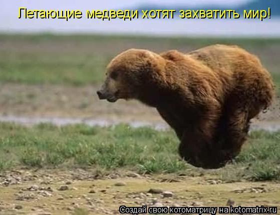Котоматрица: Летающие медведи хотят захватить мир!