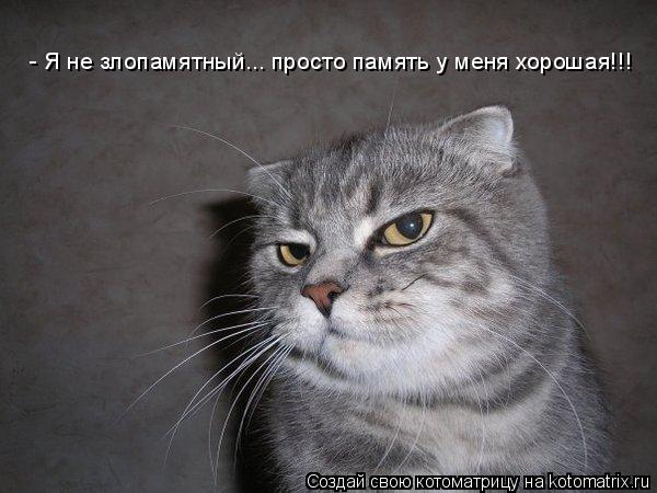 Котоматрица: - Я не злопамятный... просто память у меня хорошая!!!