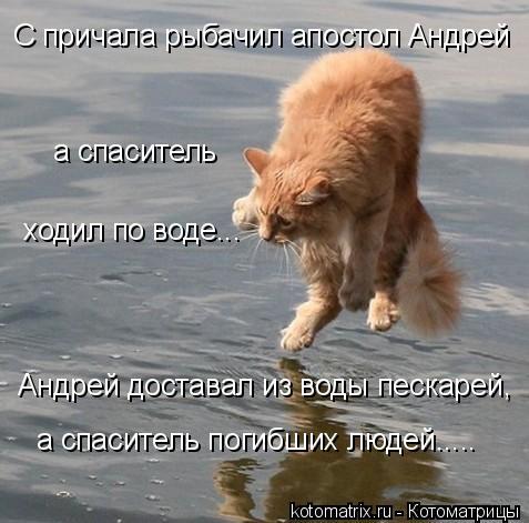 Котоматрица: а спаситель  ходил по воде... Андрей доставал из воды пескарей, С причала рыбачил апостол Андрей а спаситель погибших людей.....
