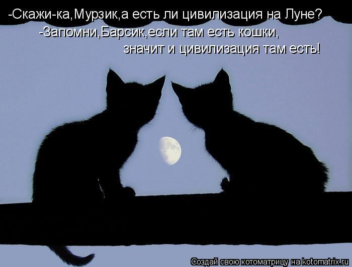 Котоматрица: -Скажи-ка,Мурзик,а есть ли цивилизация на Луне? -Запомни,Барсик,если там есть кошки, значит и цивилизация там есть!