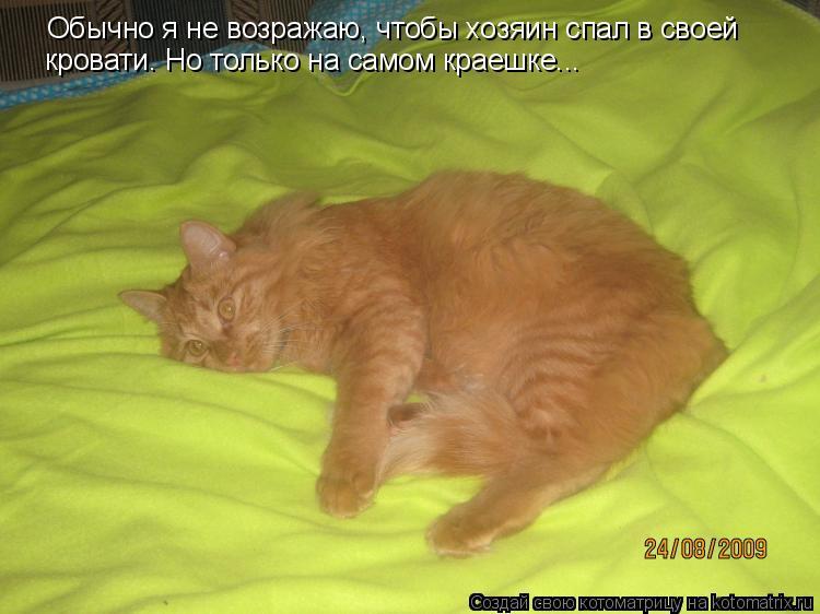 Котоматрица: Обычно я не возражаю, чтобы хозяин спал в своей  кровати. Но только на самом краешке...