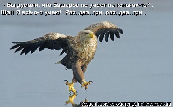 Котоматрица: - Вы думали, что Башаров не умеет на коньках-то?..   Ща!! Я всё-о-о умею!. Раз..два..три..раз..два..три..