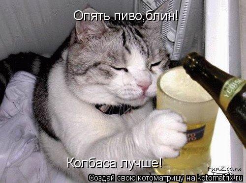 Котоматрица: Опять пиво,блин! Колбаса лучше!