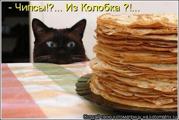 http://kotomatrix.ru/images/lolz/2009/12/14/432621.jpg