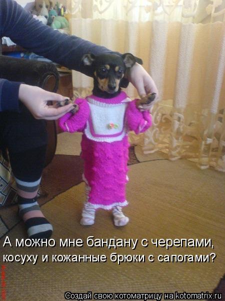 Котоматрица: А можно мне бандану с черепами, косуху и кожанные брюки с сапогами?