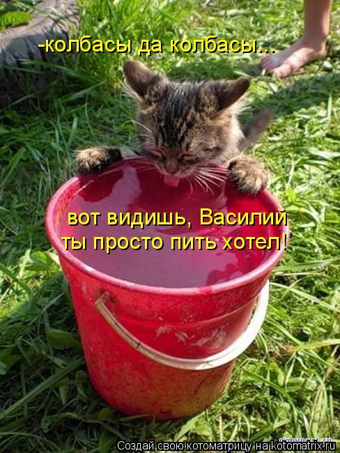 Котоматрица: -колбасы да колбасы... вот видишь, Василий ты просто пить хотел!